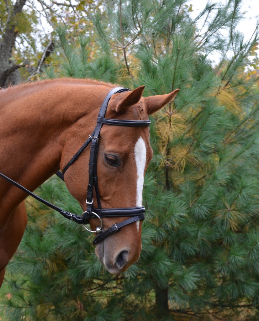 Centerline bridle