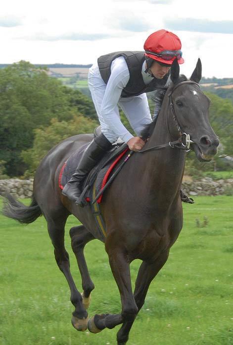 race-flexi-riding