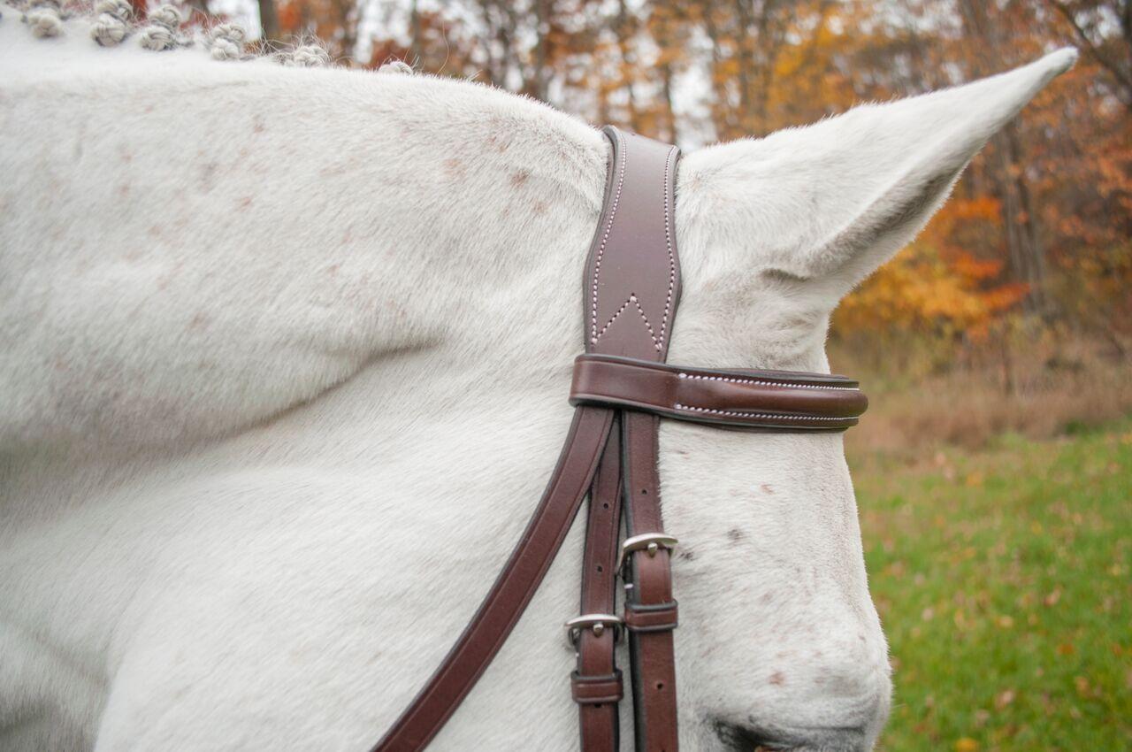 millbrk headstall close up