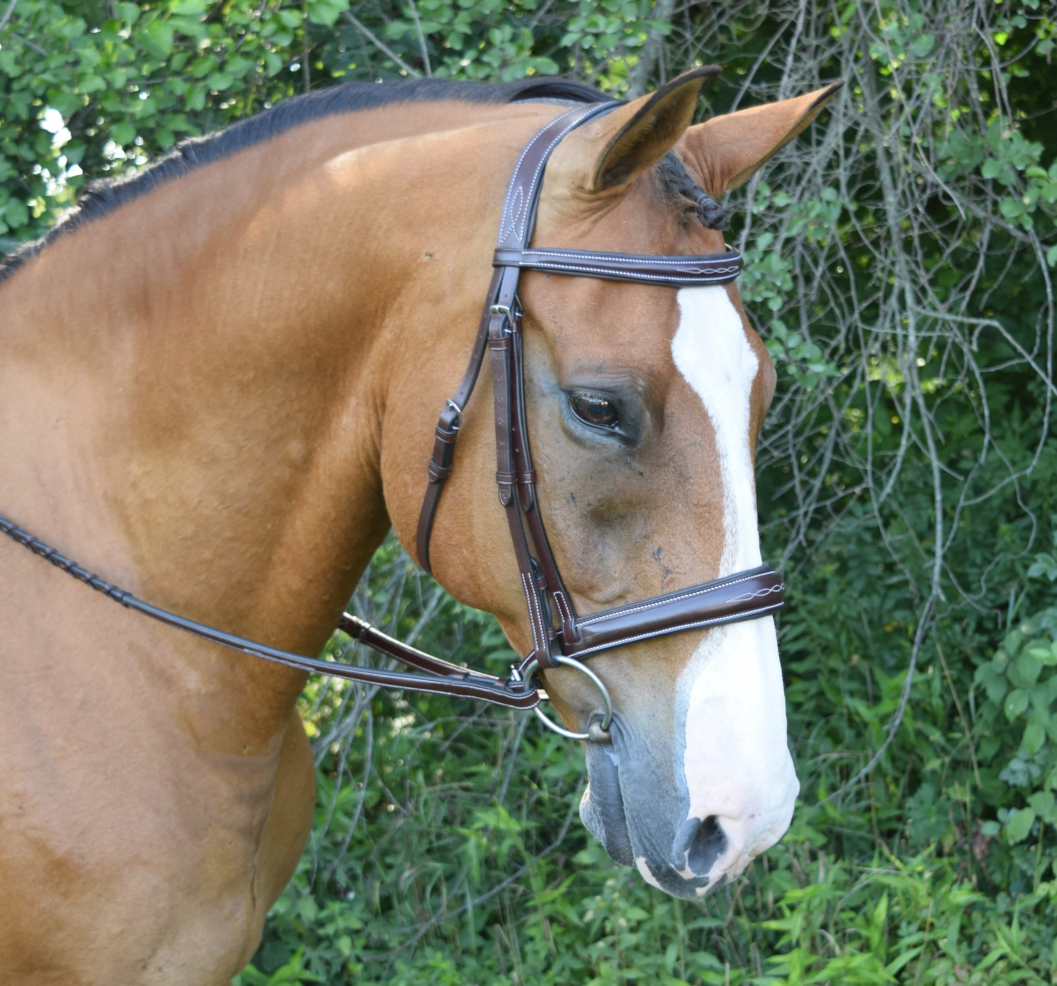 HUNTER BRIDLES